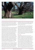 Rural Landscapes - English Heritage - Page 6