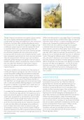 Introductions to Heritage Assets - Hillforts - English Heritage - Page 4