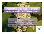 Impact of biological invasions on forest ecosystem services