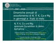 Dinamiche annuali di assorbimento di N, P, K, Ca e ... - Fertirrigazione