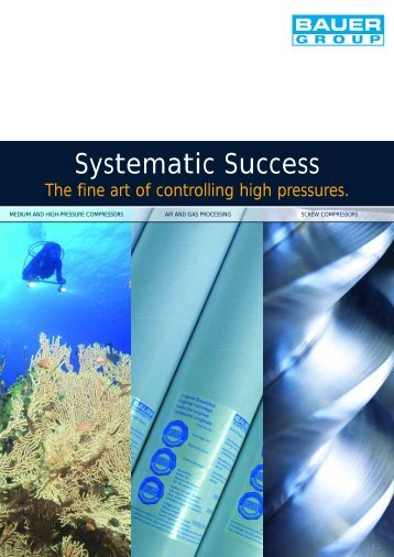 Systematic Success