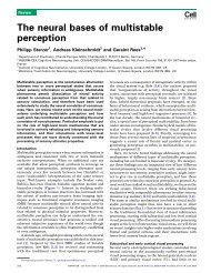 The neural bases of multistable perception - ResearchGate