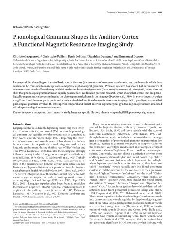 Phonological Grammar Shapes the Auditory Cortex: A Functional ...