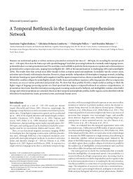 A Temporal Bottleneck in the Language Comprehension Network