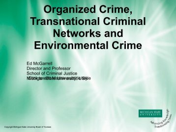 Mr. Edmund McGarrell, Director, School of Criminal Justice ... - UNICRI