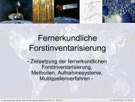 Fernerkundliche Forstinventarisierung - Fernerkundung Uni Trier ...