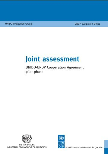 Joint assessment - Unido