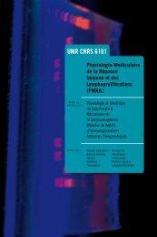 UMR CNRS 6101