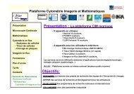 Cytométrie et Imagerie en flux - Université de Limoges