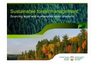 Sustainable forest management - SIFI