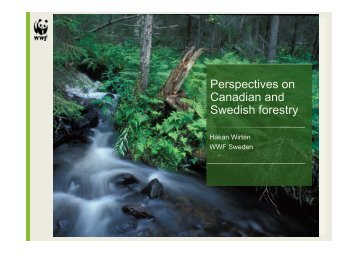 Perspectives on Canadian and Canadian and Swedish forestry - SIFI