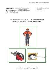 Linee guida per l'uso in sicurezza delle motoseghe ... - Unipd-Org.It