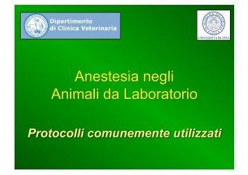 Tecniche anestesiologiche nei diversi animali da laboratorio
