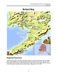 Bristol Bay Regional Economic Opportunity Plan - Bristol Bay Native ... - Page 6