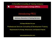 Introducing PEG - Project Executive Group