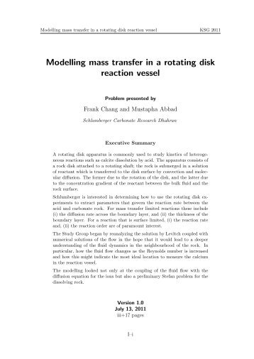 Modelling mass transfer in a rotating disk reaction vessel