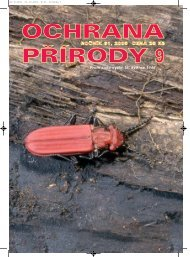 Charakter, ráz a identita krajiny - Časopis Ochrana přírody