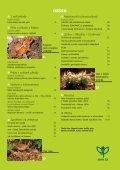 Cíle a limity ochrany krajinného rázu - Časopis Ochrana přírody - Page 2