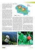 Cíle a limity ochrany krajinného rázu - Časopis Ochrana přírody - Page 5