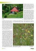 Cíle a limity ochrany krajinného rázu - Časopis Ochrana přírody - Page 6