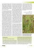 Ochrana přírody č. 4/2007 - Časopis Ochrana přírody - Page 7