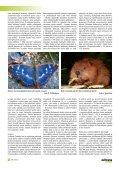 Záchranný program sysla obecného v ČR - Časopis Ochrana přírody - Page 6