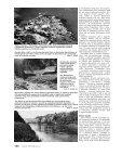 Ochrana přírody č. 5/2003 - Page 5