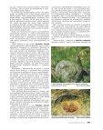 Ochrana přírody č. 4/2002 - Page 6