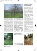 OP 10-06 - Časopis Ochrana přírody - Page 5
