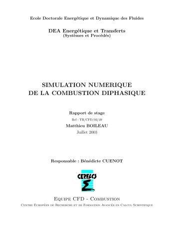 simulation numerique de la combustion diphasique - cerfacs