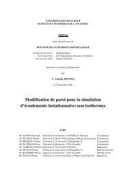 M. DEVILLE Michel, Professeur à l'Ecole Polytechnique - Institut de ...