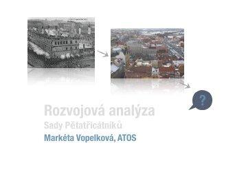 vopelkovamarketa_analyzarozvoje