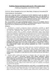 Problémy financování dopravních staveb v ČR a jejich řešení