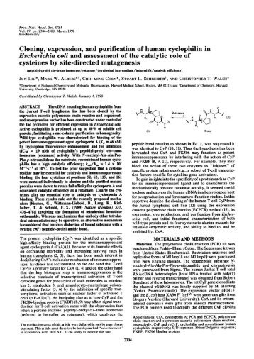 Escherichia coli and assessment ofthe catalytic role of