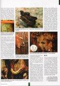 Užitečný hmyz v zahradnictví - nepřítel škodlivého ... - pumila - Page 2