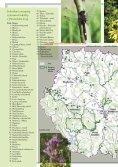 NATURA 2000 - Calla - Page 4