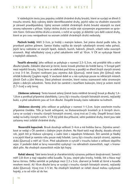 zde ke stažení (pdf, 2282 kB) - Calla