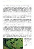zde ke stažení (pdf, 2282 kB) - Calla - Page 6