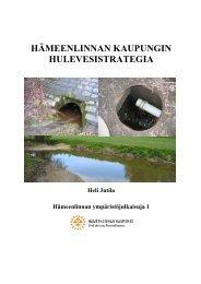 Hulevesistrategia - Hämeenlinna