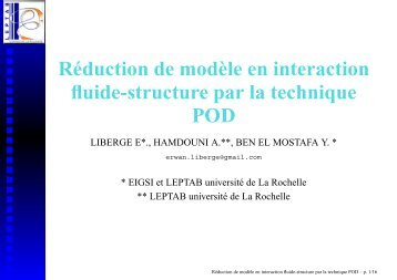 Réduction de modèle en interaction fluide ... - Université Lille 1