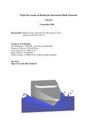 Projet de Groupe de Recherche Interaction Fluide ... - Université Lille 1