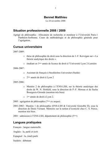 Bennet Matthieu Situation professionnelle 2008 / 2009 Cursus ...