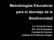 Metodologías Educativas para el abordaje de la Biodiversidad