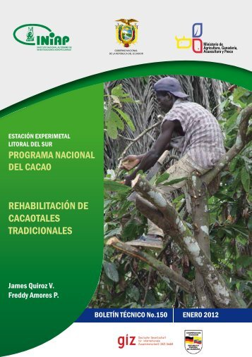rehabilitación de cacaotales tradicionales - Universidad Nacional de ...