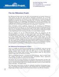 Über das Millenniums-Projekt