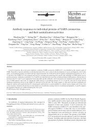 Antibody responses to individual proteins of SARS ... - ResearchGate