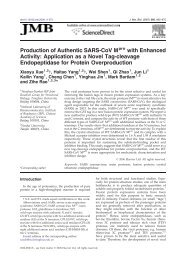 Production of Authentic SARS-CoV M with Enhanced Activity ...