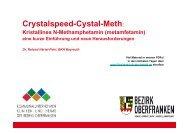 Crystalspeed-Crystal-Meth - Kommunalunternehmen Kliniken und ...