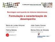 Formulação e caracterização do desempenho - CRP