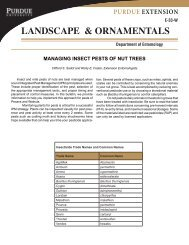 Managing Insect Pests of Nut Trees - Purdue Extension Entomology ...
